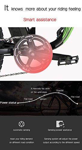 Extrbici XF800, E-Bike,1000W, 48V, 13Ah, Xf800, weiß - 7