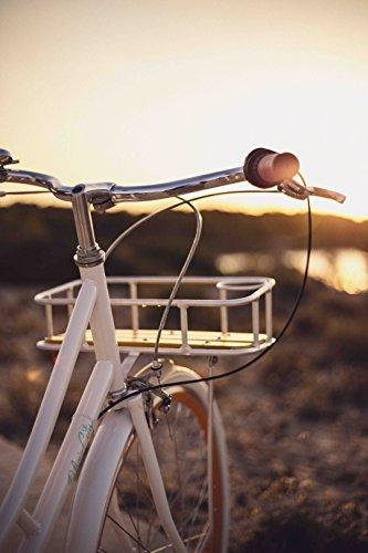 Fabric Cityrad - Hollandrad Damen Fahrrad mit Korb, Shimano Inter 3-Gang, 5 Farben, 14 Kg. (Pearl Whitechapel Deluxe, 45) - 7