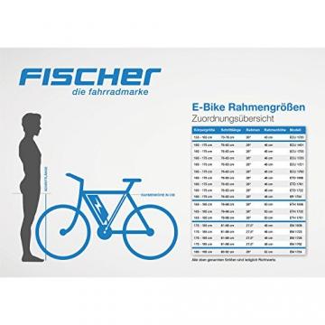 FISCHER E-Bike RETRO ER 1704, schwarz, Vorderradmotor 36 V/317 Wh und LED-Display -