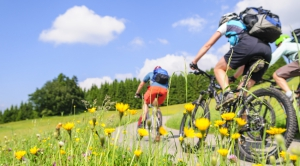 Mountainbike Schuhe Test