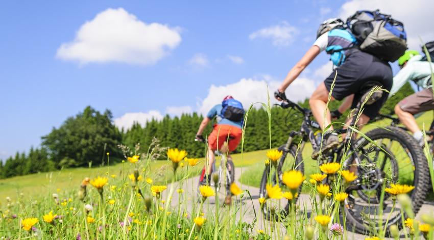 Radtour mit Mountainbike in der Natur